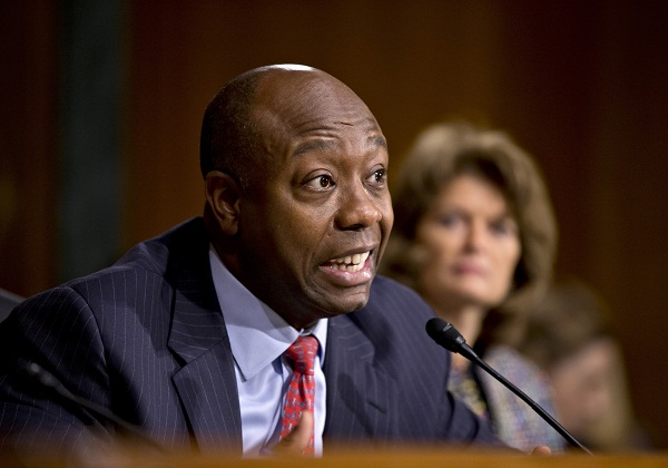 Sen. Tim Scott (R-S.C.) questions Medicare chief Marilyn Tavenner on Capitol Hill.